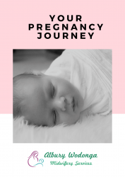 AW Midwifery Pregnancy Joruney
